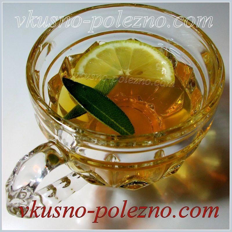 Чай из шалфея (с лимоном и мёдом)